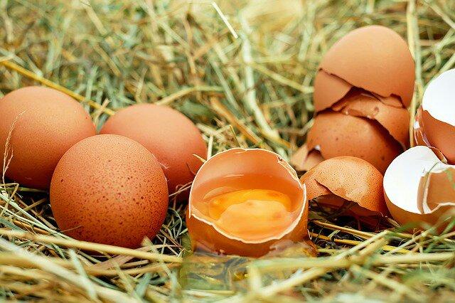 Daging dan telur ayam
