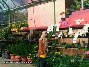 Wisata Bukit Flora Pasuruan