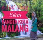 Kangen Kota Malang