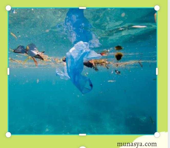 Penyebab Pencemaran Laut di Indonesia Yang Harus Dihindari