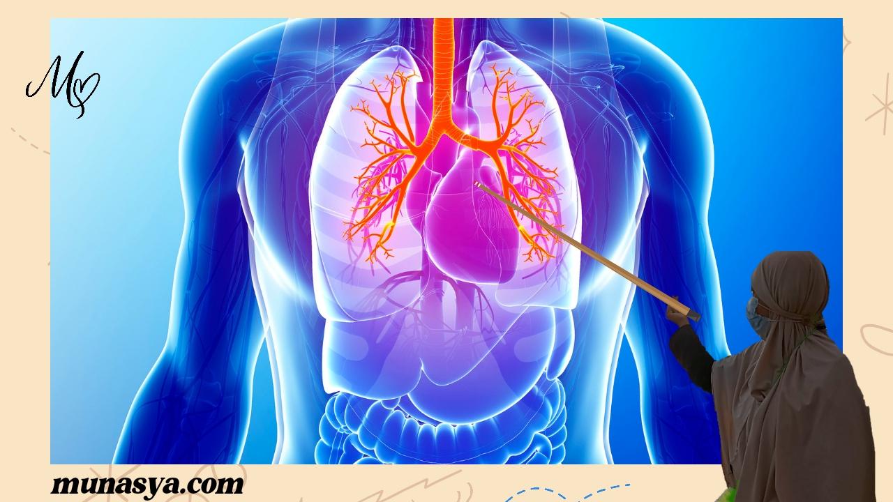 Asbetosis penyakit paru-paru